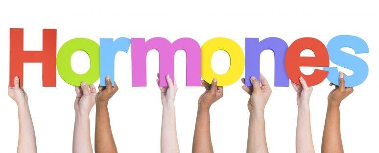 Hormones Sign 800x353 e1524326732255 general knowledge