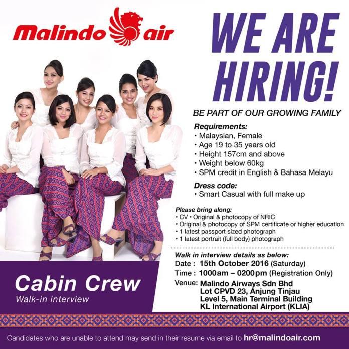 cabin crew and flight attendant
