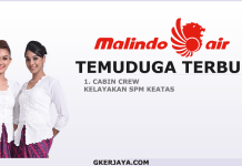 Temuduga terbuka Cabin Crew Malindo Air Terkini
