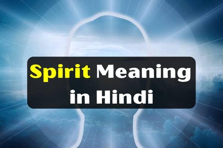 स्पिरिट का मीनिंग - Spirit Meaning in Hindi