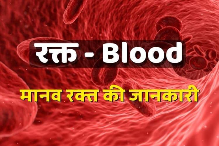 मानव रक्त की संरचना - Rakt Ki Sanrachna