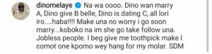 Dino Melaye Reacts To Allegations Of Him Dating, Impregnating Or Marrying A Certain Lady 1