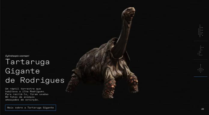 Tartaruga Gigante de Rodrigues, Getty Images