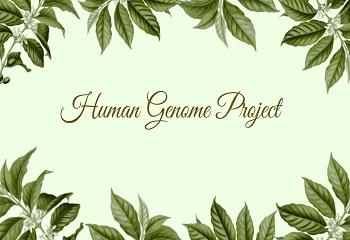 Human Genome Project - Human Genome Project: