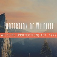 Protection Of Wildlife / Wildlife Protection Act, 1972