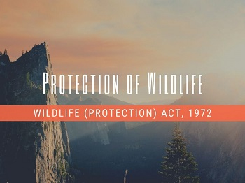 protection of wildlife - Protection Of Wildlife / Wildlife Protection Act, 1972