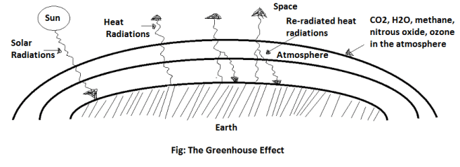 the greenhouse effect - Ecosystem