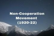 The Non-Cooperation Movement (1920-22)