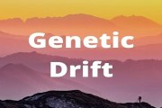What is Genetic Drift? Discuss its influence on Evolution & how does it produce Founder Effect & Genetic Bottleneck?