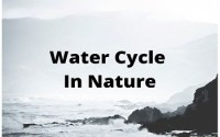 water cycle in environment