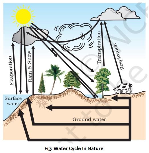 water cycle in nature - Water Cycle In Nature [Hydrological Cycle]