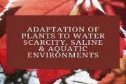 Adaptation of Plants to Water Scarcity, Saline & Aquatic Environments