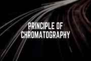 Principle of Chromatography
