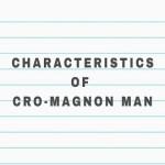 Characteristics of Cro-Magnon Man