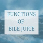 Functions of Bile Juice