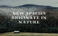 New Species Originate In Nature