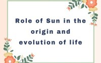 Role of Sun in the origin and evolution of life