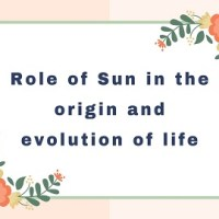State the role of Sun in the origin and evolution of life on earth