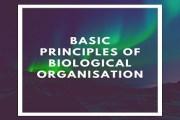 Basic Principles Of Biological Organisation