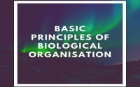 Basic Principles Of Biological Organisation
