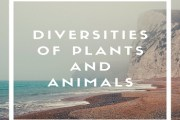 Diversities Of Plants And Animals