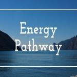 Energy Pathway