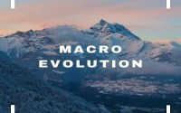 Macro Evolution