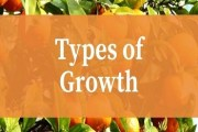 Types of Growth