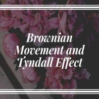 Brownian Movement and Tyndall Effect