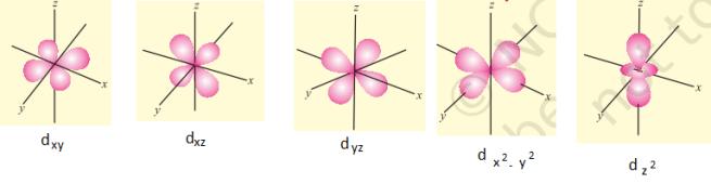 d orbitals - Shapes of Atomic Orbitals