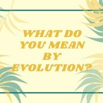 What do you mean by Evolution?