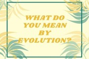 What do you mean by Evolution? Does Mechanism satisfactorily explain the evolution of life and mind?