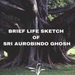Brief Life Sketch of Sri Aurobindo Ghosh