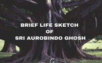 Brief Life Sketch of Sri Aurobindo Ghosh
