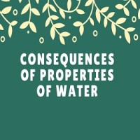 Consequences of Properties of Water