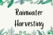 Rainwater Harvesting- Methods and Advantages