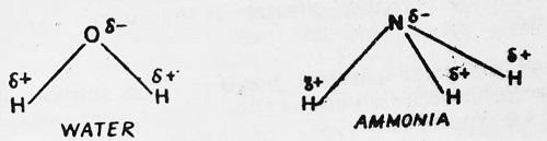 ammonia reaction for polar covalent bond - What are Polar and Non-polar Covalent Bonds?
