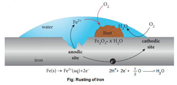rusting of iron - Electrochemical Theory of Rusting and Prevention of Corrosion