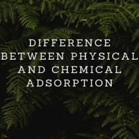 Difference Between Physical and Chemical Adsorption
