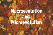 Difference Between Macro-Evolution and Micro-Evolution
