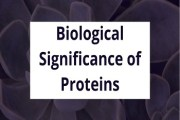 Biological Significance of Proteins (Biological Role of Proteins)