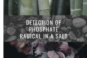 Ca(H2PO4)2 and Detection of Phosphate Radical in a Salt