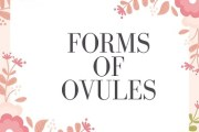 Forms of Ovules
