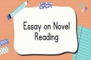 Essay on Novel Reading