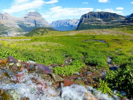 Bubbling Brook into Meadow with Mountains