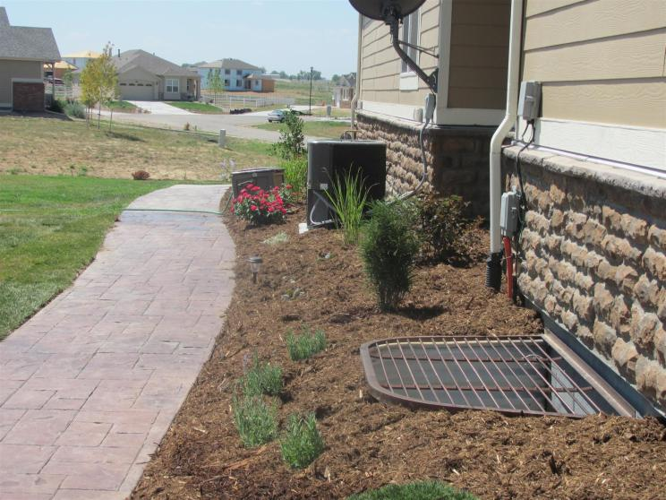 Plantings to Eventually Hide Utilities