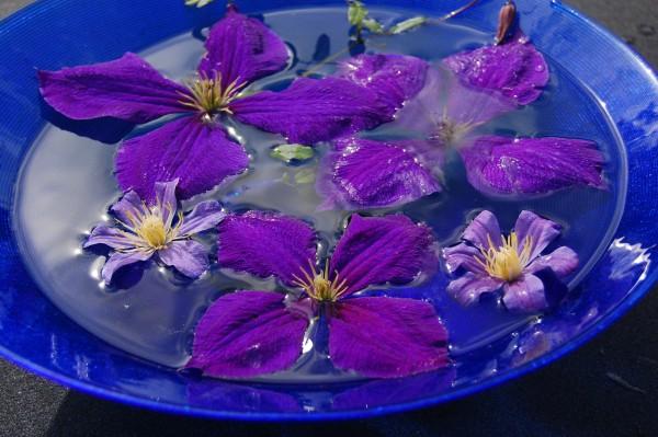 skål i blått med och utan orange (1)