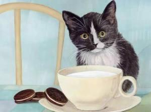 Katt tekopp kakor
