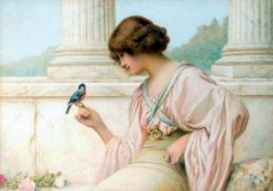Kvinna fågel ny