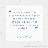 citation inspirante Stambak - tonus conscience de soi